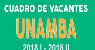 Cuadro de vacantes UNAMBA 2018